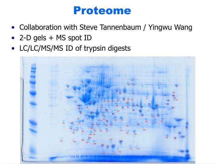 Collaboration with Steve Tannenbaum / Yingwu Wang