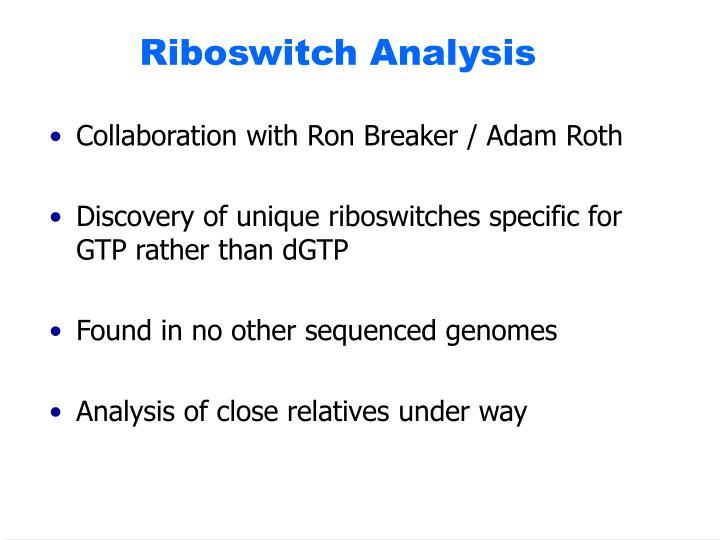 Riboswitch Analysis