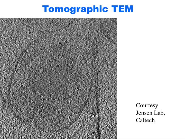 Tomographic TEM