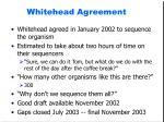 whitehead agreement