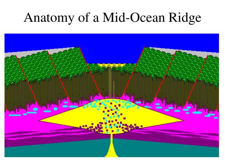 Anatomy of a Mid-Ocean Ridge