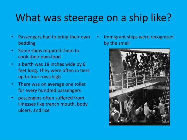 What was steerage on a ship like?