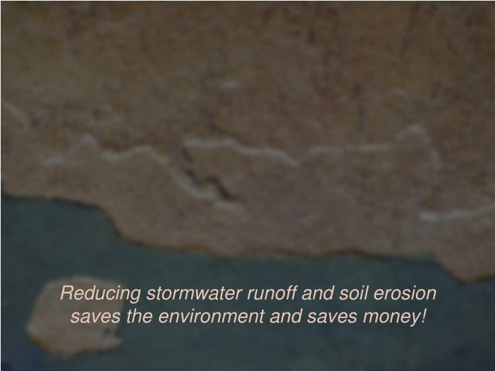 Reducing stormwater runoff and soil erosion saves the environment and saves money!