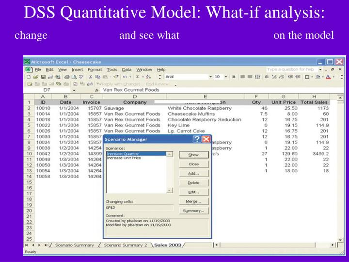 DSS Quantitative Model: What-if analysis:
