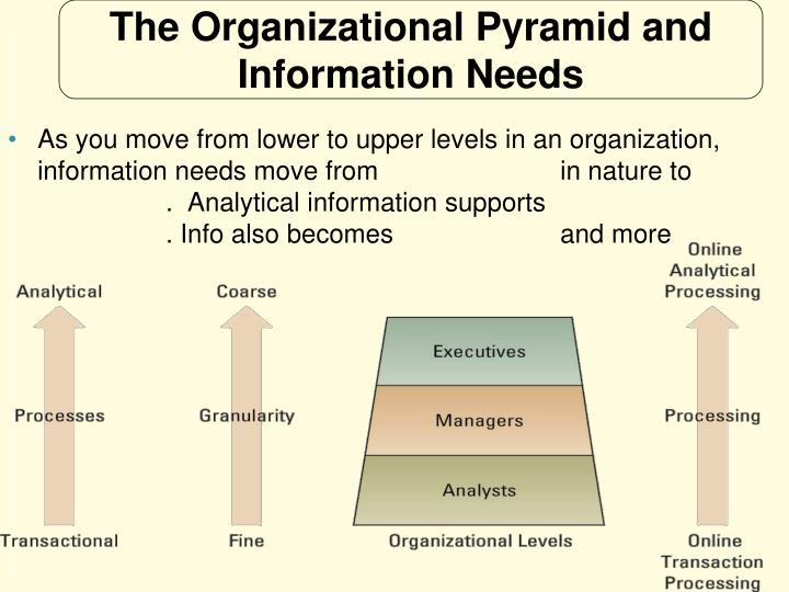 The Organizational Pyramid and Information Needs
