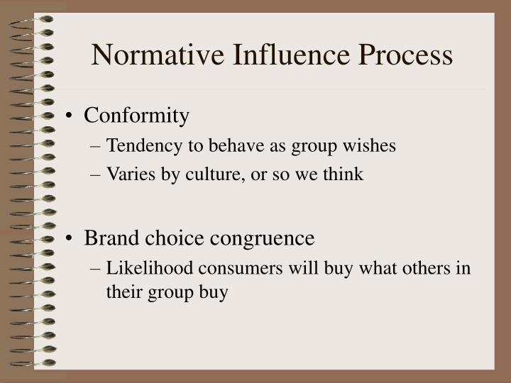Normative Influence Process