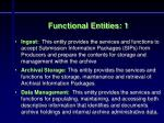 functional entities 1