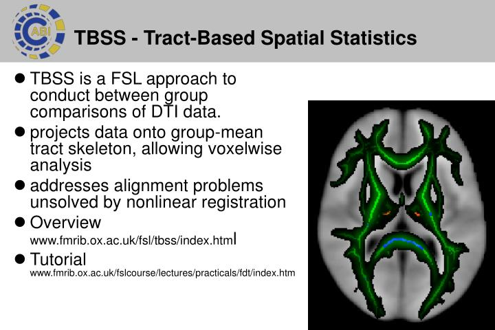 TBSS - Tract-Based Spatial Statistics