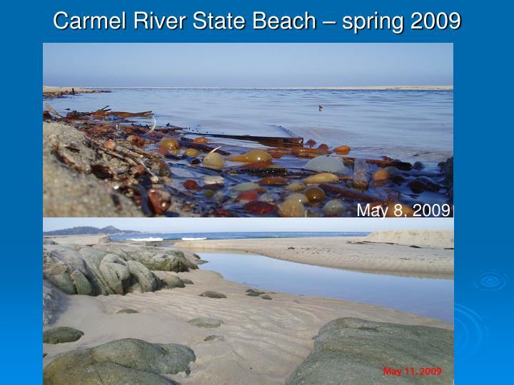 Carmel River State Beach – spring 2009