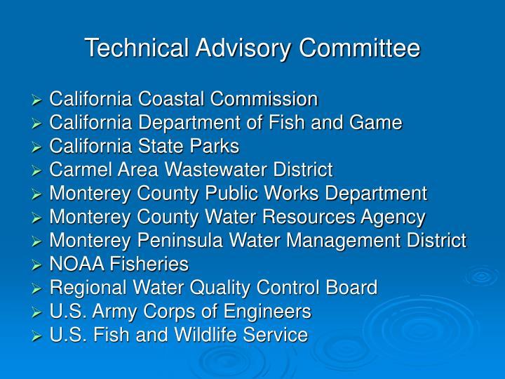 Technical Advisory Committee