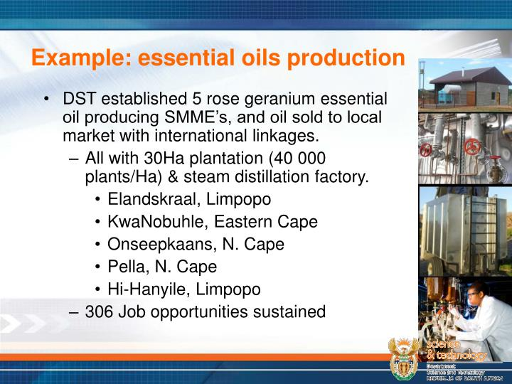 Example: essential oils production