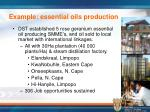example essential oils production