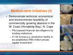 medium term initiatives 4