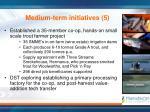 medium term initiatives 5