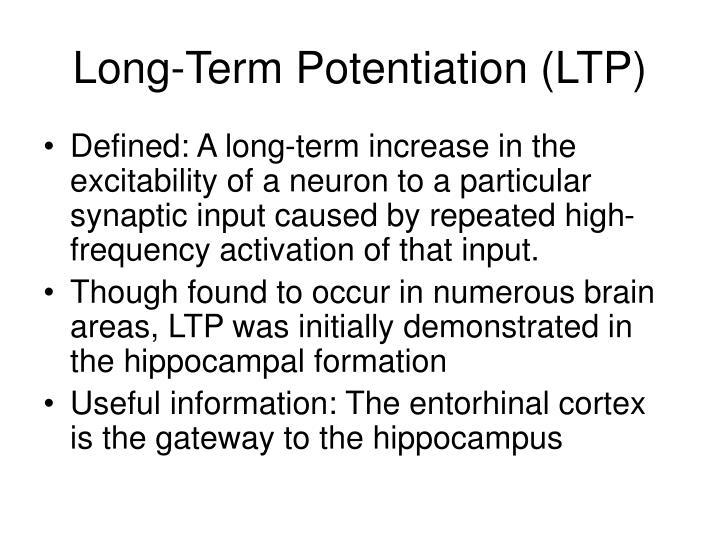 Long-Term Potentiation (LTP)