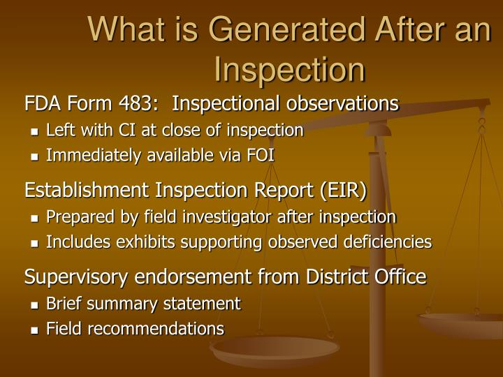 What is Generated After an Inspection