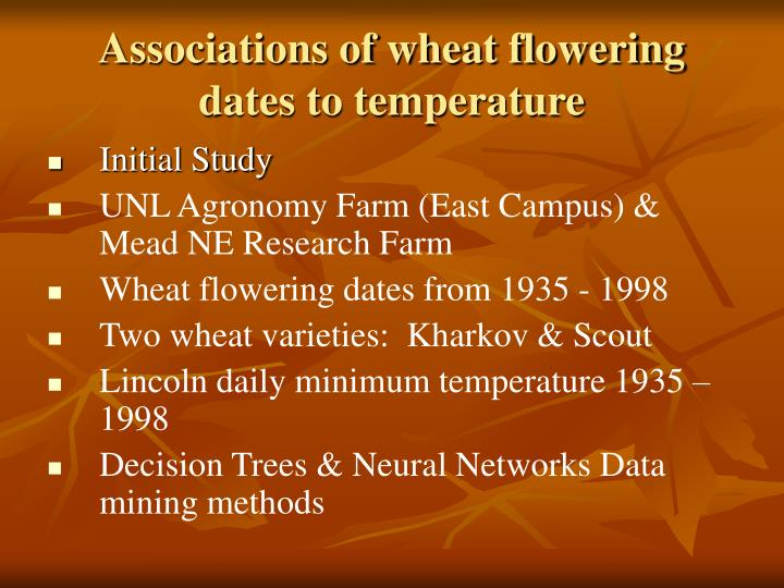 Associations of wheat flowering dates to temperature