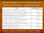 relationships between horticultural wheat sorghum flowering dates