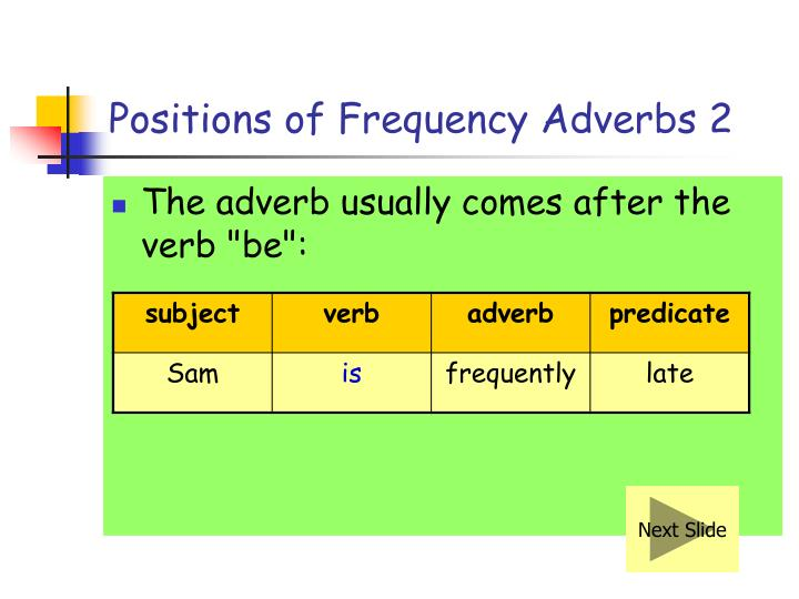 Positions of Frequency Adverbs 2