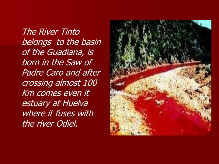 The River Tinto belongs  to the basin of the Guadiana, is born in the Saw of Padre Caro and after crossing almost 100 Km comes even it estuary at Huelva where it fuses with the river Odiel.