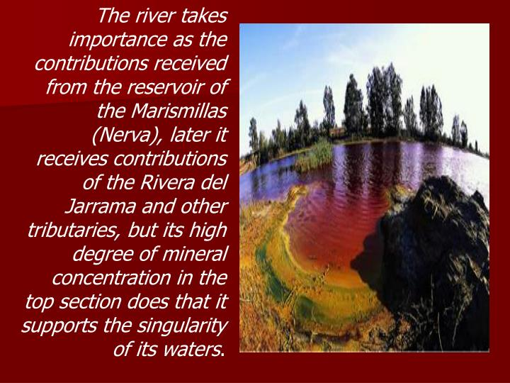 The river takes importance as the contributions received from the reservoir of the Marismillas (Nerva), later it receives contributions of the Rivera del Jarrama and other tributaries, but its high degree of mineral concentration in the top section does that it supports the singularity of its waters