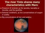 the river tinto shares many characteristics with mars