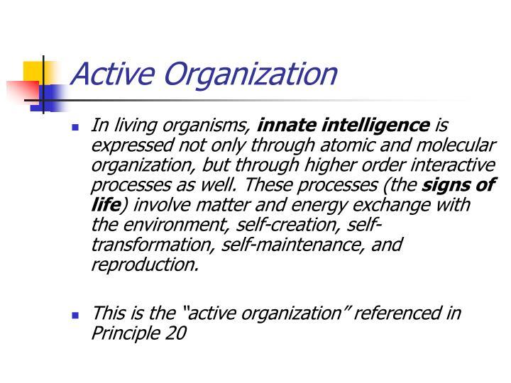 Active Organization