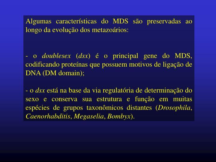 Algumas características do MDS são preservadas ao longo da evolução dos metazoários: