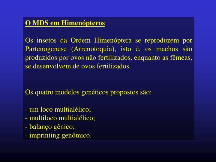 O MDS em Himenópteros