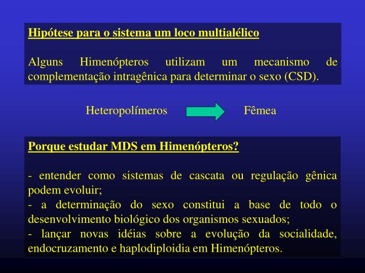 Heteropolímeros