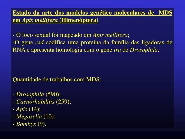 Estado da arte dos modelos genético moleculares de  MDS em
