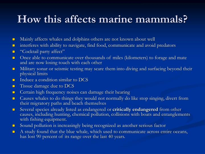 How this affects marine mammals?