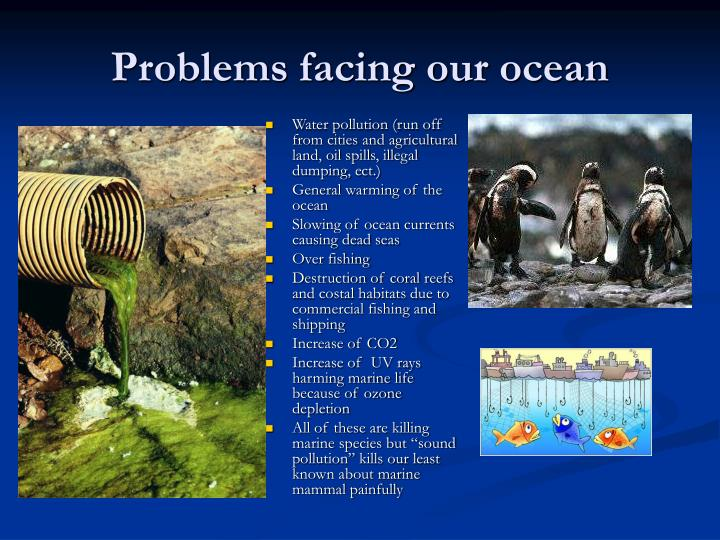 Water pollution (run off from cities and agricultural land, oil spills, illegal dumping, ect.)