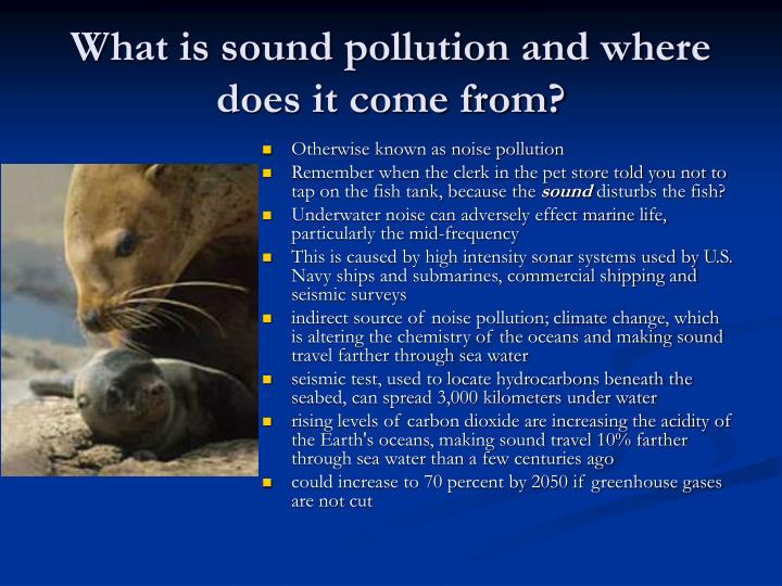 What is sound pollution and where does it come from?