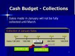 cash budget collections2