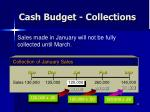 cash budget collections3