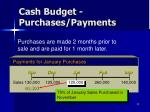 cash budget purchases payments