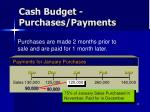 cash budget purchases payments1
