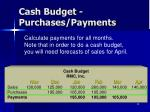 cash budget purchases payments2