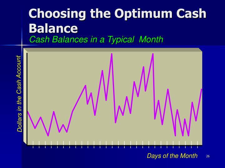 Choosing the Optimum Cash Balance