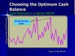 choosing the optimum cash balance1