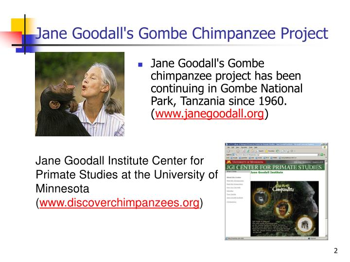 Jane Goodall's Gombe Chimpanzee Project