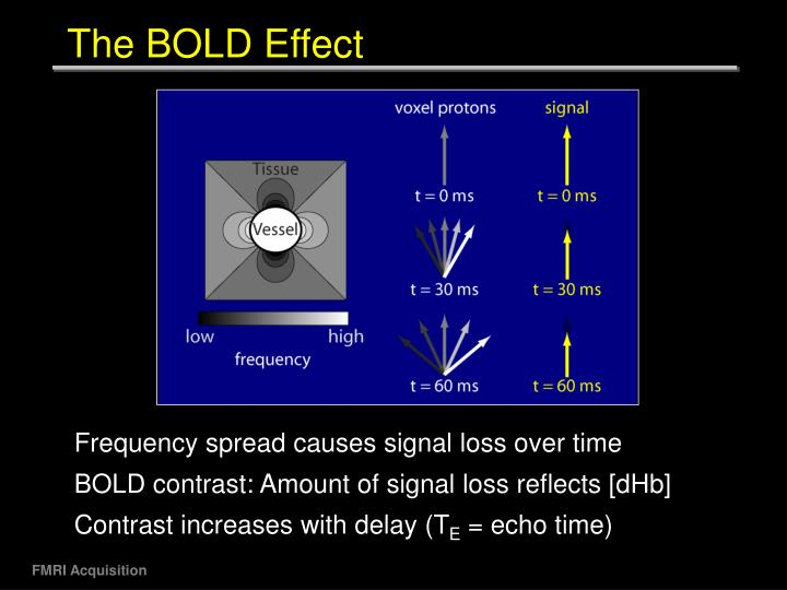 The BOLD Effect