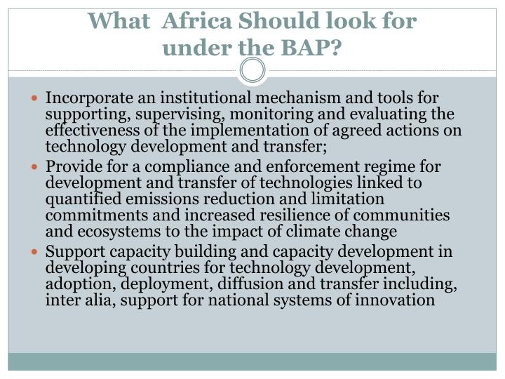 What  Africa Should look for
