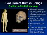 evolution of human beings 2 million to 500 000 years ago1