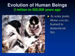 evolution of human beings 2 million to 500 000 years ago3