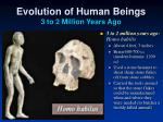 evolution of human beings 3 to 2 million years ago1