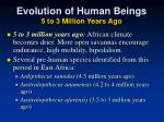 evolution of human beings 5 to 3 million years ago