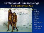 evolution of human beings 5 to 3 million years ago3