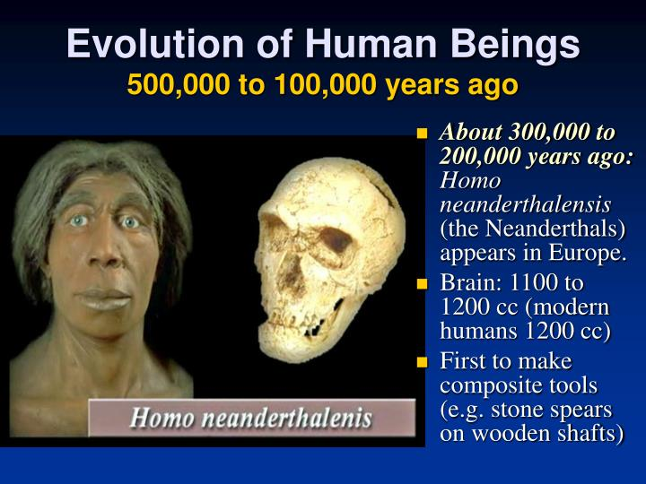 Evolution of Human Beings